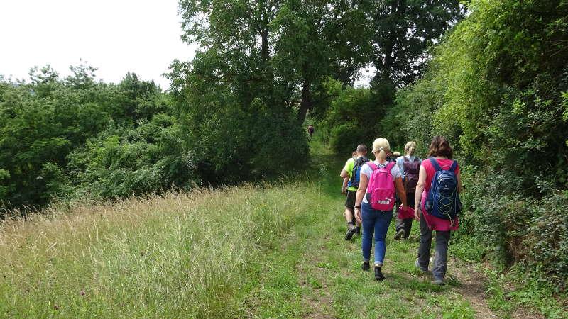 Wanderung per Fähre für Singles in Unterfranken
