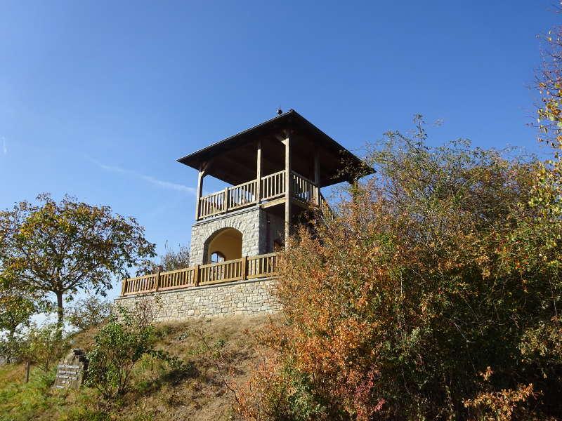 Weininsel – Wanderung & Federweißer