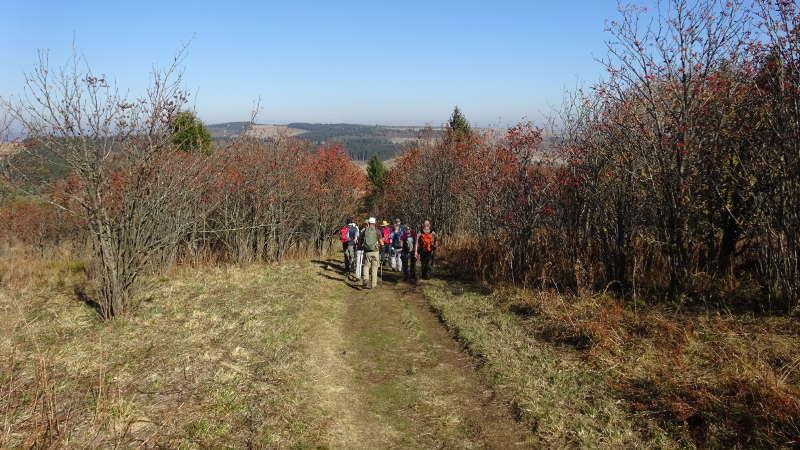 Basaltsee – Heidelstein – Singlewandern in der Rhön