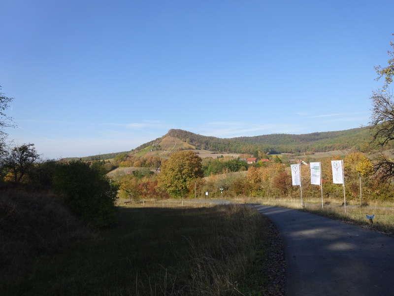 Blick Stollburg Ruine