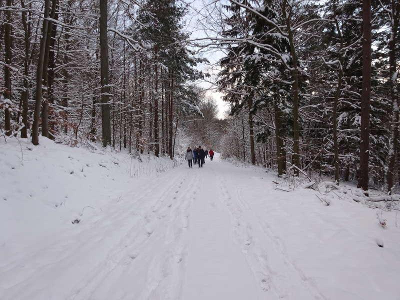 Winterwanderung Rhön