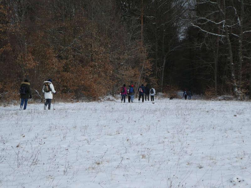 Winterwandern in der Rhön Unterfranken