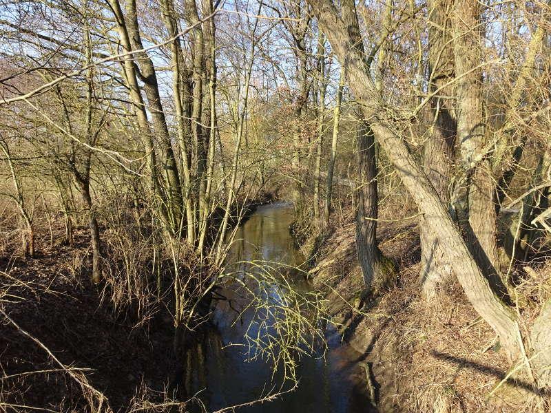 Fluss Volkach bei Schweinfurt