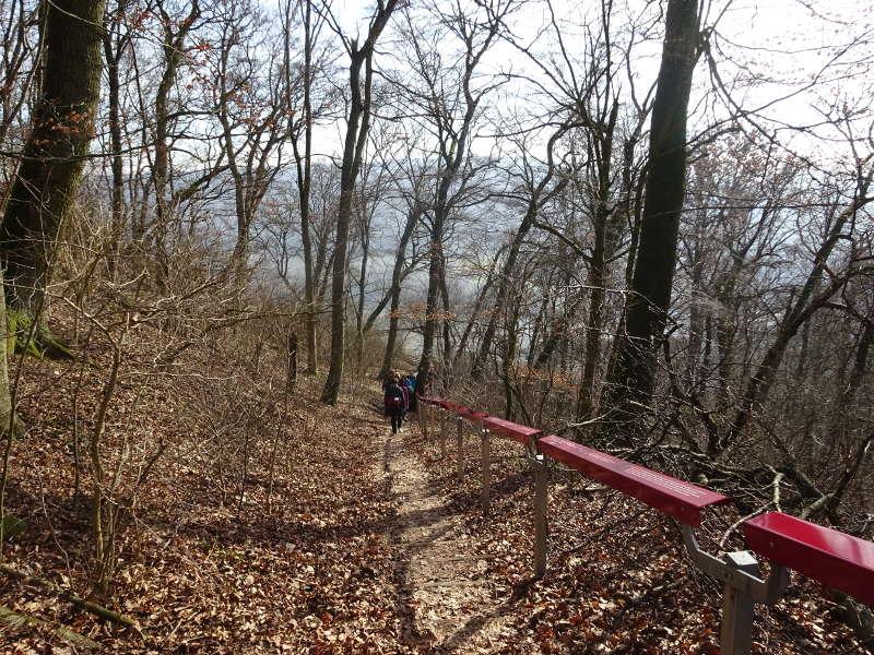 Abstieg zum terrior F Ruine Handthal Steigerwald