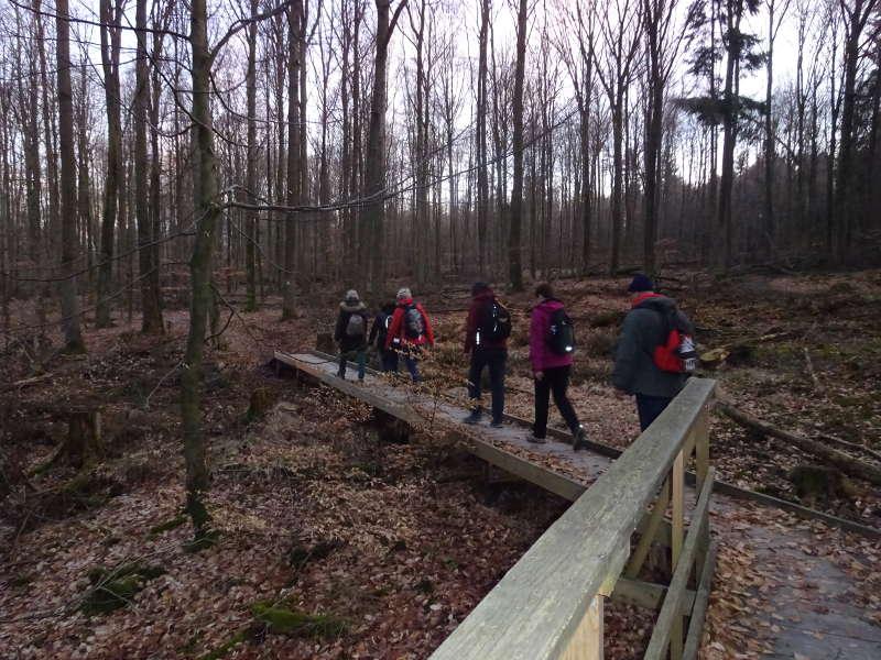 Brücke Wanderung Singles Steigerwald Baumwipfelpfad
