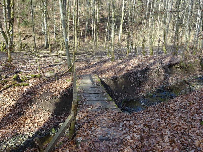 Brücke im Buchenwald Unterfranken Bayern Outdoor Singles gemeinsam