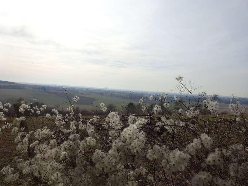 Aussicht auf Grafenrheinfeld Kernkraftwerk Wanderweg Mühlen