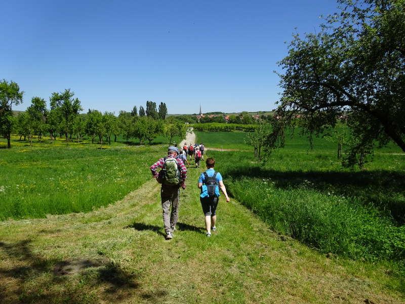 Fähre bei Fahr Kaltenhausen Singlewanderung