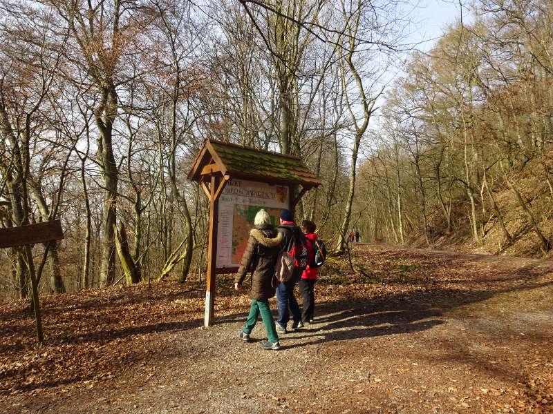 Infotafel Ruine Stollburg Steigerwald terrior f