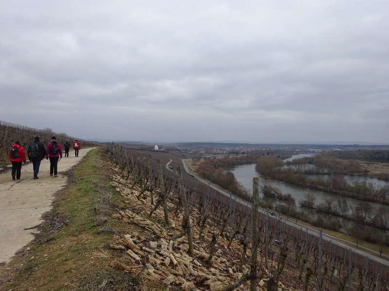 Volkacher Mainschleife Maria im Weingarten