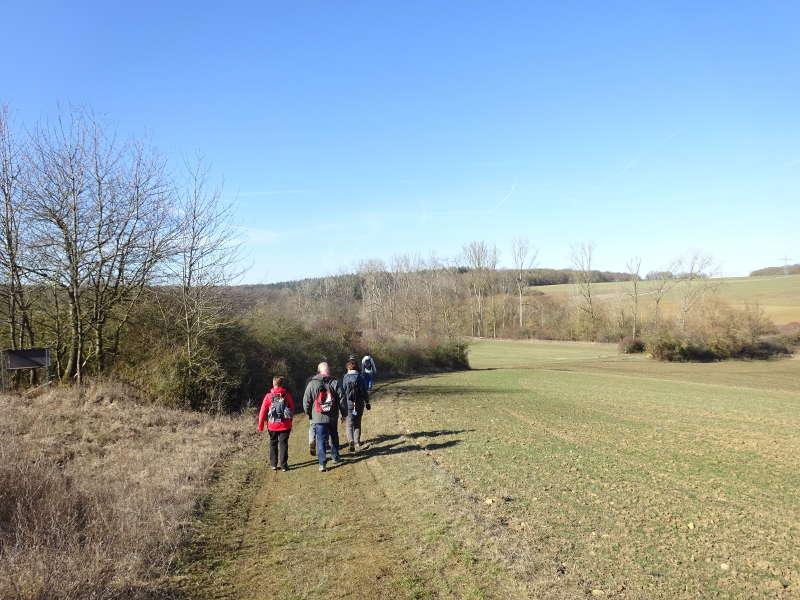 Outdoor Aktiv Singlewanderung Unterfranken Sulzfeld bei Kitzingen