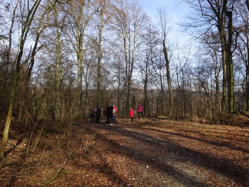 Singles wandern im Steigerwald