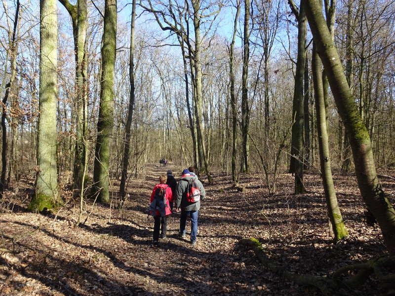 Singles auf Waldwanderwegen in Sulzfeld am Main Traumrunde
