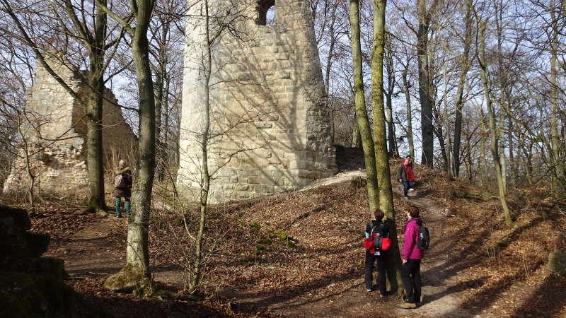Ruine Stollburg im Steigerwald Handthal Single Wandern