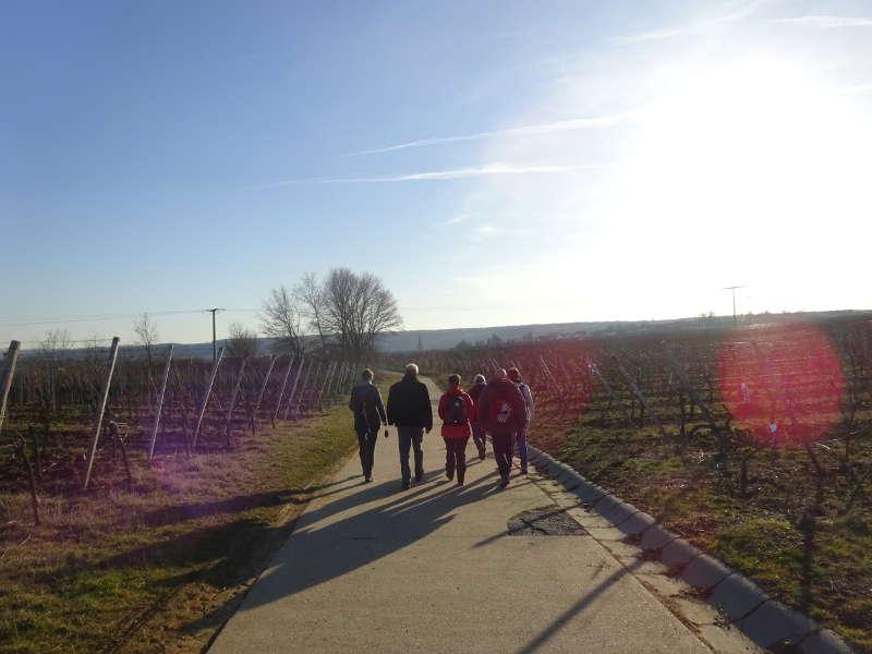 Singlewanderung Outdoor Aktiv in Sulzfeld Traumrunde