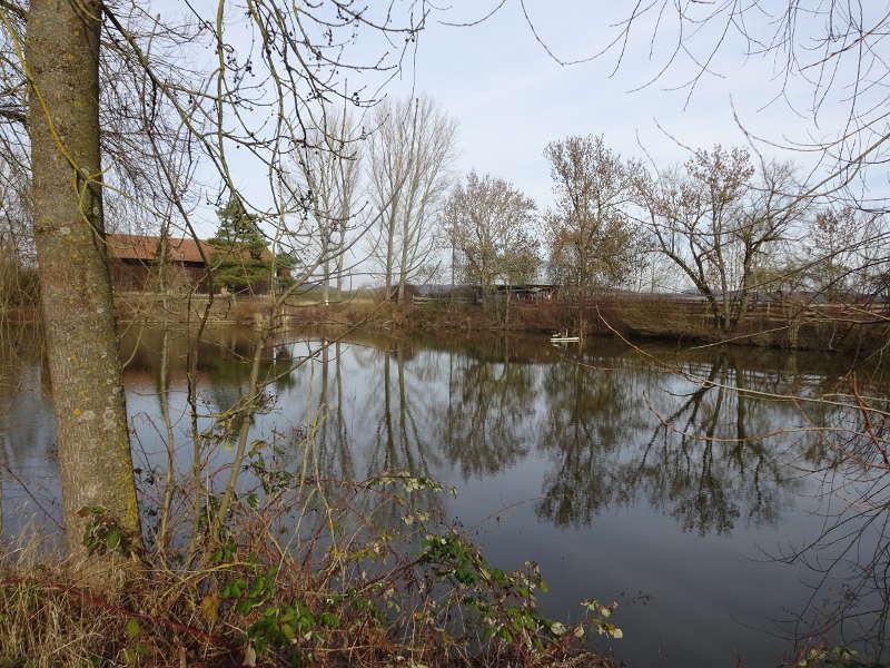 Teich Kaltenhof Schonungen Unterfranken Wanderung Single