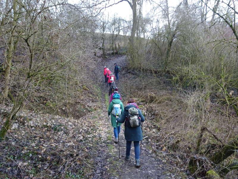 Dschungel Wanderweg Vogelsburg am Main