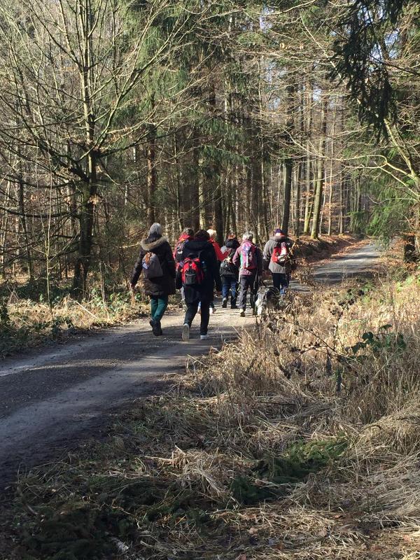 Wandergruppe Singles im Steigerwald Zentrum Handthal Ebrach