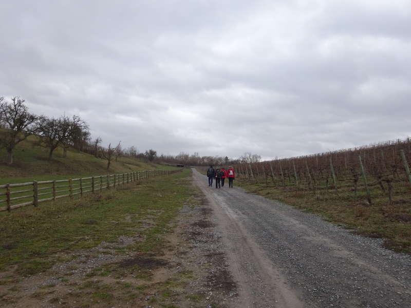 Wanderung Hallburg in Franken