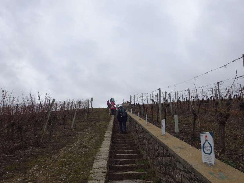 Weinpfad Escherndorf Weinprobe Nordheim