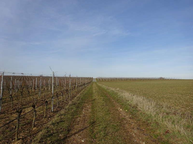 Weinwanderweg Unterfranken Singles
