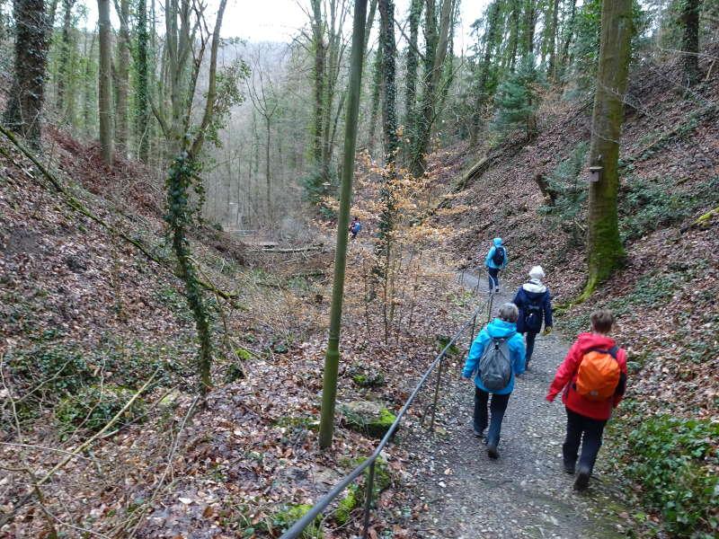 Wanderung Annaschlucht Würzburg Steinbachtal Singlewanderung
