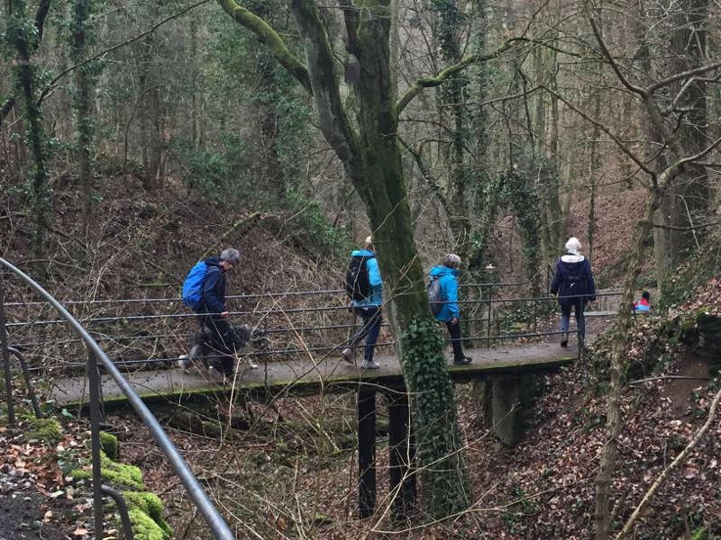 Wandern über Brücke in der Annaschlucht Verschönerungsverein würzburg Single Bayern