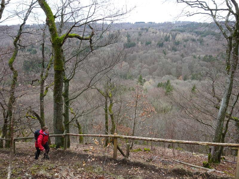 Singles Wandern hoch auf den Gangolfsberg Unterfranken Rhön