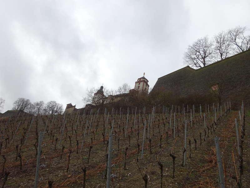 Weinlage Osthang Festung Marienberg Würzburg Single Wandern gemeinsam
