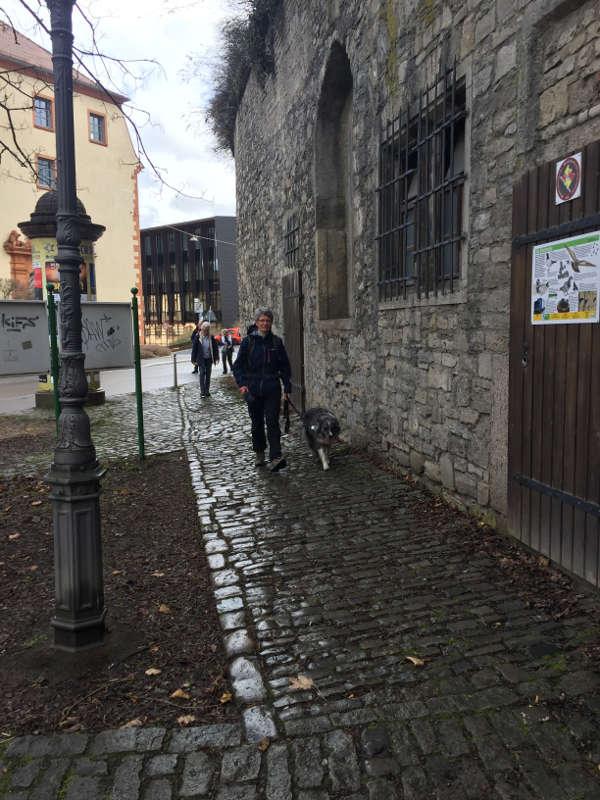 wanderführerin Sonja und Merle in Würzburg mit Singles gemeinsam unterwegs zur Festung Marienberg Bayern