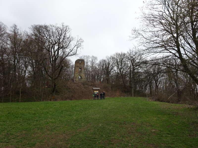 Speckfeld Ruine Markt Einersheim Bullenberg Outdoor Aktivität für Singles in Unterfranken Iphofen Steigerwald