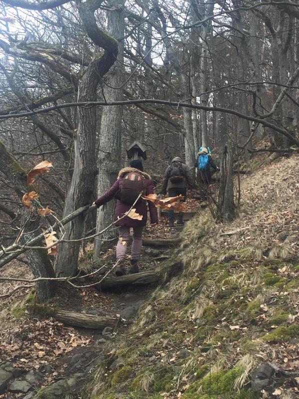 Anstieg auf den Gangolfsberg Rhön Unterfranken Singlewanderung Bayern Oberelsbach