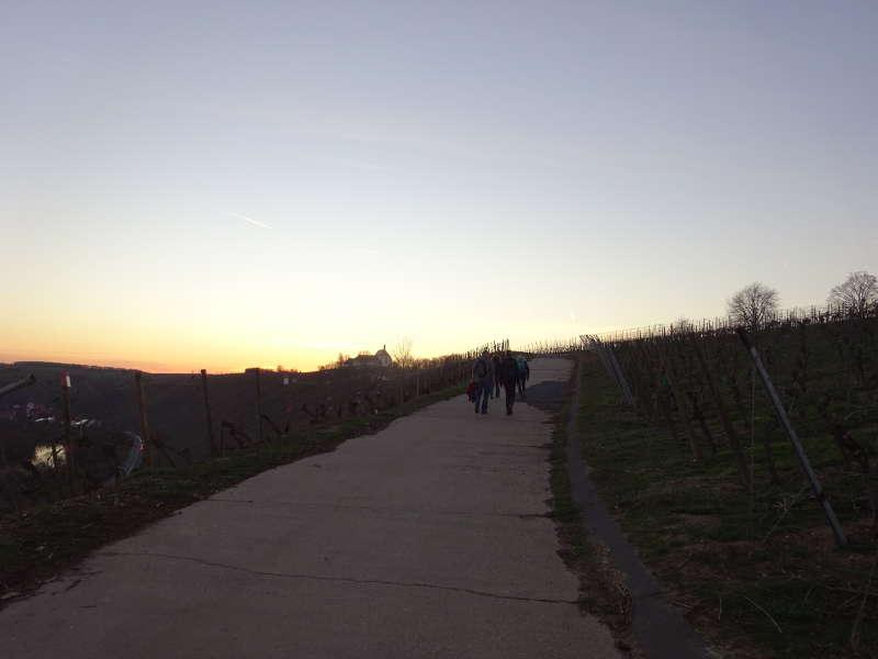 VG Vogelsburg an Volkacher Mainschleife nahe Maria im Weingarten am Main Unterfranken Singles Wandern Outdoor Event Bayern