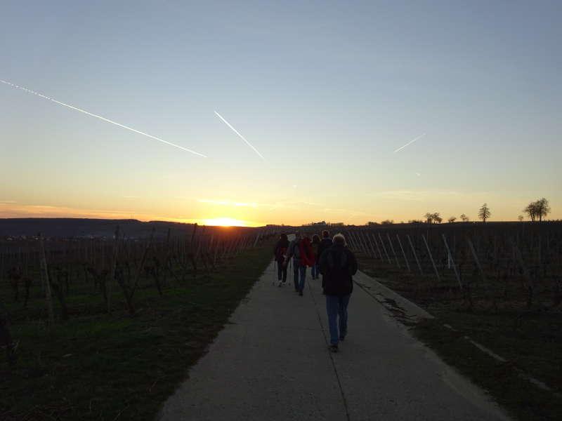 Wandern zur Vogelsburg mit Aussicht auf Weininsel und Volkacher Mainschleife durch Astheim Escherndorfer Lump Unterfranken Singles gemeinsam