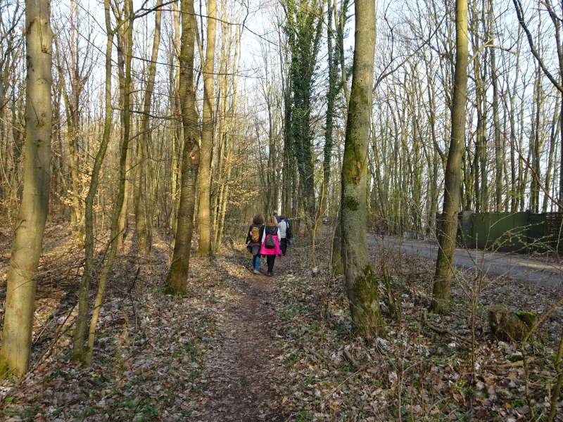 Wandergruppe wandern in Schweinfurt im Höllental Dianenslust Forsthaus Bayerische Staatsforsten Natura 2000 Singles unterwegs Wanderschuhe Wanderstock