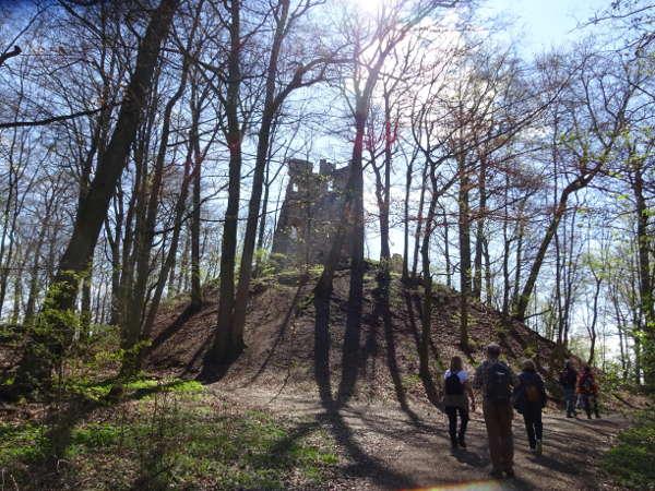 Stollburg Singles Wandern Unterfranken Handthal Schweinfurt Steigerwald Zentrum Outdoor Aktivität