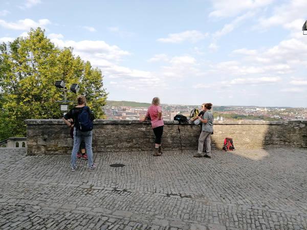 Schluchten & Aussicht in Würzburg